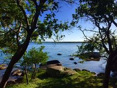 Florianópolis - Brasil (ea_m42) Tags: brasil florianópolis lagos sunyday thebestshot thebestdestinations earthoficial
