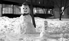 Elmhurst Snowmen_0001_sig (Fadde Photography) Tags: winter snow storm night hospital landscape evening aftermath snowman nighttime snowmen elmhurst dogwood52 dogwoodweek5