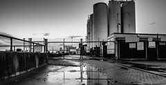 Secure (Number Johnny 5) Tags: uk sky bw white black reflection monochrome puddle outdoors nikon industrial noir great norfolk silo d750 yarmouth tamron 2470mm