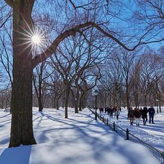 Walk in the Park (another_scotsman) Tags: snow newyork cityscape centralpark manhattan