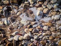 file_3264x2448_007239 (Ricymar Photography (Thanks to all the fans!!!!)) Tags: wallpaper nature landscape creta crete sonydslr isladecreta islandofgreece islandofcrete