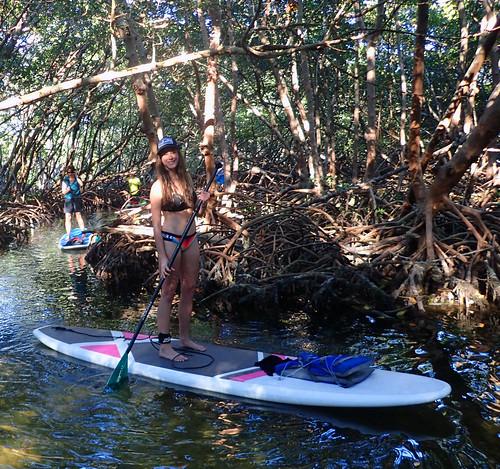 2_17_16 Kayak Paddleboard Tour Sarasota FL 14