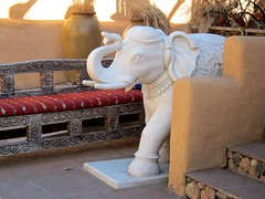 A White Elephant In The Room (suenosdeuomi) Tags: elephant newmexico santafe bench exotic ornate benches elephantintheroom canons90