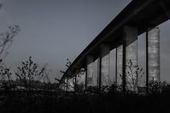 Orwell bridge (ForzaMad17 (Curtis Beadle)) Tags: bridge history canon suffolk suspension 5d felixstowe orwellbridge ipswich 5dsr