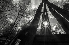 Where we used to play (christophhofer79) Tags: trees bw sun playground memories againstsun tokina111628