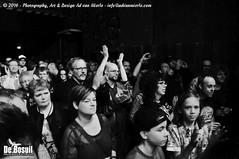 2016 Bosuil-Het publiek bij The Paladins en Cats on the Corner 18-ZW