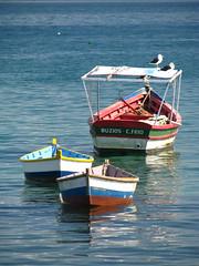 Buzios (nico_rata) Tags: viaje naturaleza sol azul brasil riodejaneiro relax atardecer mar barco barcos playa buzios arena cielo verano turismo naranja placer descanso