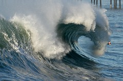 IMG_4856 (supercrans100) Tags: beach photography big waves surfing calif seal beaches skimboarding backwash bodyboarding bodysurfing so