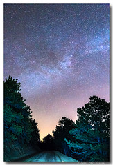 Forest Night Light (Striking Photography by Bo Insogna) Tags: road street travel blue sky nature night forest dark stars landscape star colorado space deep atmosphere twinkle galaxy nebula astrophotography astronomy rockymountains universe exploration backroad cosmic starry cosmos pinetrees constellation highcountry starlight starfield jamesinsogna