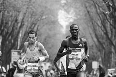milano_marathon-1035