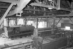 Locos in shed (LC1073) Tags: walkers 1219 steamlocomotive steamloco 2606 broadmeadow 7350 dieselhydraulic z19 z26 nswgr dieselloco 73class dubsco broadmeadowloco broadmeadowlocodepot broadmeadowroundhouse transportheritagensw thnsw