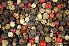 Pepper mixture (Leonid Firsov) Tags: pepper mixture