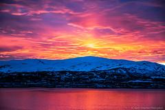 8Q1A3656 (slava_kushvalieva) Tags: sunset solnedgang vannsport vannscooter