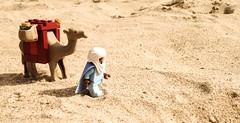 Tuareg (Willyjett) Tags: desert lego minifig tuareg minifigure minifigurine