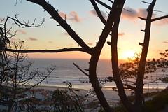 Sunset (PauloConstantino) Tags: sunset pordosol sea tree praia beach portugal dark mar woods waves silhouettes árvore ondas escuro silhuetas sooc