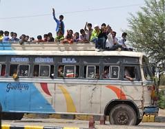 Bus Load! (cn174) Tags: life travel india countryside daily jaipur ranthambore ranthambhore