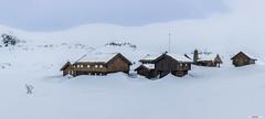 Haukelifjell... (bent inge) Tags: snow ski norway skiing telemark haukeli haukelifjell norwegianmountains norwegianwinter bentingeask march2016