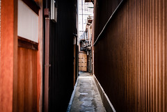 (Ricardo Villagran) Tags: leica japan zeiss kyoto leicam8 zeisszm35mmf2