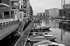 Westhafen : Marina (tmertens0) Tags: city architecture am pentax frankfurt main 14 stadt architektur hafen smc westhafen habour 50m