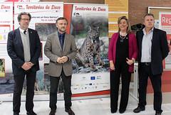 lince (Universidad de Sevilla) Tags: internacional ciencia seminario lince biologa ibrico universidaddesevilla investigacin especie conservacin reintroduccin