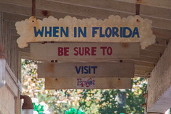 When In Florida (BrianCarey_) Tags: world usa animal orlando day dino florida kingdom disney land wdw walt dinoland dak whirl disneys primeval