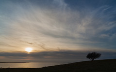 Late (Jakob Arnholtz) Tags: light landscape natuer arnholtz