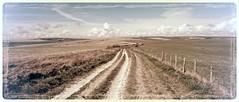Downland path (ephemerol) Tags: summer sky clouds rural downs landscape track path farm farmland hills southdowns bucolic
