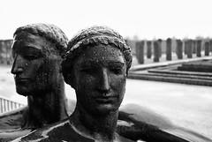 Le Alpi (Roybatty63) Tags: blackandwhite bw torino blackwhite nikon bn statua biancoenero giardini reggia volto venaria d80 reggiadivenaria villeegiardini