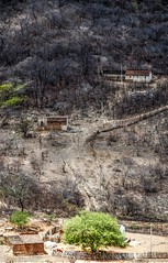 Nos caminhos do serto (felipe sahd) Tags: brasil cear nordeste serto semirido