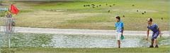 Nikko Locastro (AJVaughn.com) Tags: fountain alan del golf james j championship memorial fiesta tour camino outdoor lakes hills national vista scottsdale disc vaughn foutain 2016 ajvaughn ajvaughncom alanjv
