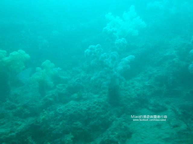 우도잠수함14