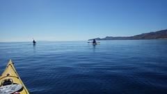 day 8 (sraanasol) Tags: ocean mexico meer kayak seakayak bajacalifornia baja baf kajak seekajak seekajaktour