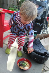 """That's an egg!"" (quinn.anya) Tags: miso toddler sam egg ramen pointing westbrae westbraebiergarten"