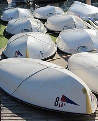 Going Turtle (jmaxtours) Tags: toronto boats harbour torontoontario torontoharbour rentals goingturtle