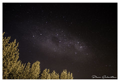 """Stars Over the City"" (Piero Sebastian) Tags: city trees light stars space constellation"