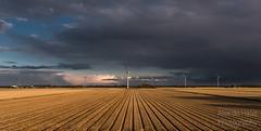 DSC_6553_Lr-edit (Alex-de-Haas) Tags: light sunset reflection netherlands field clouds landscape fire licht zonsondergang nederland thenetherlands wolken windmills dyke dijk veld dike landschap noordholland vuur reflectie windmolens petten coastalarea spreeuwendijk kunstgebied