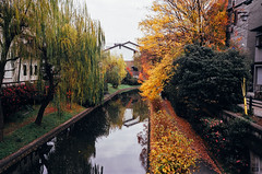 (yasu19_67) Tags: bridge film japan analog 35mm river nikon kyoto riverside fujifilm expiredfilm photooftheday autumntint filmphotography xtra400 nikonl35ad2 filmism