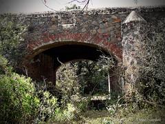 Puente de la estancia del Sabino (marthahari) Tags: bridge mxico puente arquitectura colonia arco historia airelibre crta contrafuerte estadodemxico caminorealdetierraadentro mx