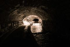Aviemore Tunnels (Newlandator) Tags: uk bridge blackandwhite scotland stream tunnel aviemore