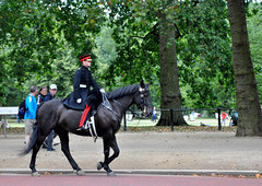 BuckinghamsBestGuard (erinakirsch) Tags: city england london britain culture british londonengland