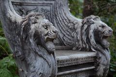 Winged Lions (Danielle_M_Bedics) Tags: sculpture fern nature statue stone forest cat garden bench wings feline seat lion peaceful sculpturegarden throne wingedlions thehuntingtonbotanicalgardens thehuntingtonlibraryartcollectionsandbotanicalgardens