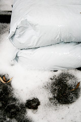 (NLMZH) Tags: winter white snow ice canon eos shiny crystals snowy plastic sack 400d canoneos400d