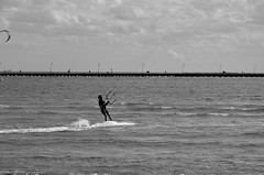 Melbourne 33 (tcmappes) Tags: blackandwhite kite sport shore monochrom australiy