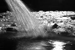 Lumiere London UK (spencerrushton) Tags: uk colour reflection london westminster night canon outdoors trafalgarsquare plastic lumiere spencer londoncity manfrotto londonnight londonuk rushton bottels canonl canonlens 24105mm manfrottotripod canon24105mmlf4 spencerrushton 760d canon24105f4lmm canon760d