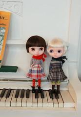 Let's play the piano, Indigo!