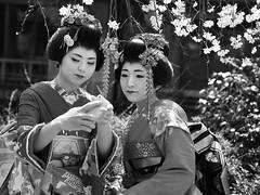 P3300781new (klausen hald) Tags: japan kyoto maiko geisha geigi