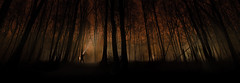 Forest Fire (Mariusz Marszaek) Tags: red sky panorama mist fog night forest fire nikon sigma 1020 d5300