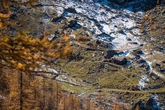 Formaggino Autunnale #25 ( YariGhidone ) Tags: life autumn mountain nature way stars landscape colours outdoor via val milky colori paesaggi montagna refuge conca stelle bivvy bivacco formaggino prali lattea germanasca cialancia