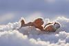 Herbst im Winter (Don Bello Photography) Tags: winter 2016 dünenhof cuxhavenberensch niedersachsen norddeutschland northerngermany macro frost frostkunst bodenfrost schnee herbstblatt laub eiskristalle panasonicphotographer panasonicfz1000 lumixphotographer lumixfz1000 reinhardbellmann donbello donbellophotography 2000views 150favorites 4000views 200favorites 250favorites 300favorites 10000views 400favorites 15000views europa europe fz1000 1000views 3000views 100favorites 5000views 50favorites acdseeultimate9 acdsee explore