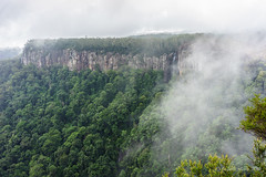 Rainbow Falls from Canyon Lookout, Springbrook NP (NettyA) Tags: misty clouds waterfall australia cliffs bushwalking qld queensland bushwalk springbrook rainbowfalls goldcoasthinterland 2016 springbrooknationalpark scenicrim seqld warriecircuit canyonlookout scbwc sonya7r